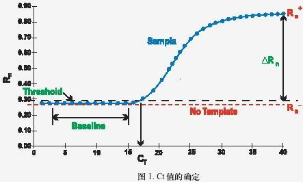 闪晶生物--实时荧光定量pcr技术服务